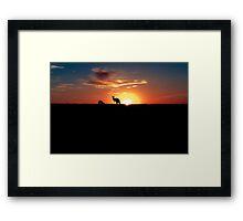 Kangaroos at Sunset Framed Print