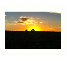 Silhouette of Kangaroos at  Sunset Art Print