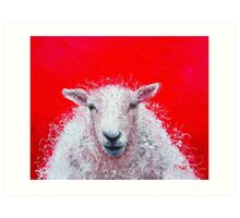A woolly white sheep on red background Art Print
