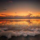 Foamy Sunset by Linda Cutche
