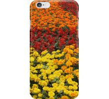 Horizontal bed, a carpet of colors  iPhone Case/Skin
