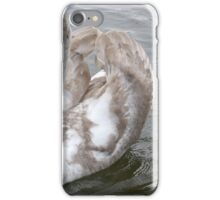 Courting white swan on blue lake water. iPhone Case/Skin