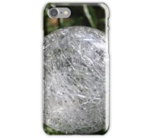 garden lamp in the form of a ball  iPhone Case/Skin