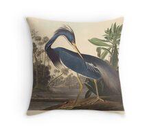 John James Audubon - Louisiana Heron 1834 Throw Pillow