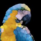 Colorful Glass Parrot by Phil Perkins