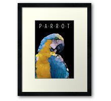 Colorful Glass Parrot Framed Print