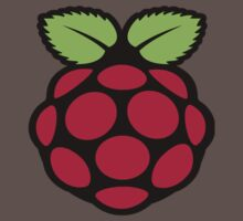 raspberry logo One Piece - Short Sleeve