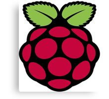raspberry logo Canvas Print