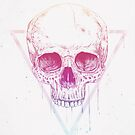 Skull in triangle by soltib