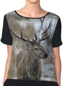 Twelve Pointed Stag in the Snow Chiffon Top