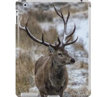Twelve Pointed Stag in the Snow iPad Case/Skin