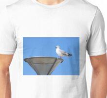 Seagull - St Clair Beach Dunedin New Zealand Unisex T-Shirt