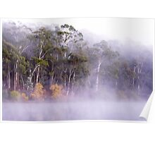 Rising fog at Lake Daylesford Poster