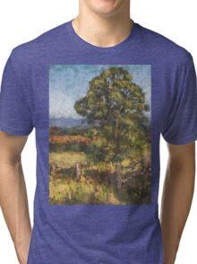 Beechwood - plein air Tri-blend T-Shirt