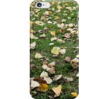 Yellow, orange and red autumn leaves  iPhone Case/Skin