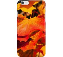 large orange and yellow maple leaves in autumn  iPhone Case/Skin