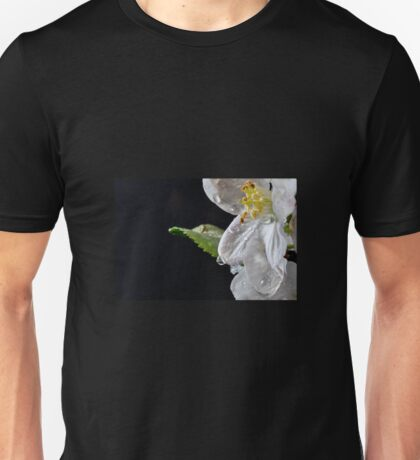 Apple and Ice Unisex T-Shirt