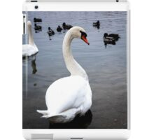 Courtship of a young gray swans  iPad Case/Skin