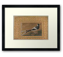 Spotted Forktail, Folio from the Shah Jahan Album , Painting by Abu'l Hasan, india Framed Print