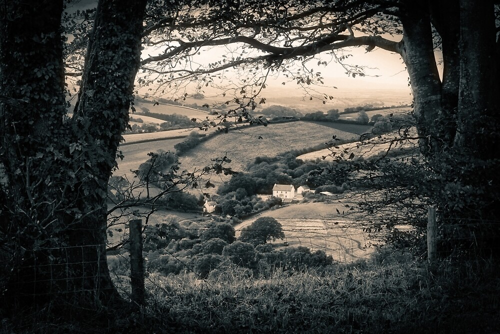 COTTAGE THROUGH THE TREES by Michael Carter