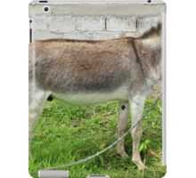 Jerusalem Donkey in a Pasture iPad Case/Skin