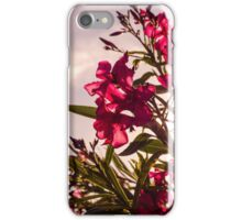 The Heart Of The Spring iPhone Case/Skin