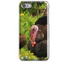 Turkey in a Field iPhone Case/Skin