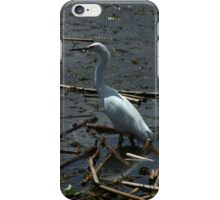 Great Heron in a Lake iPhone Case/Skin