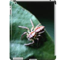 Spider iPad Case/Skin