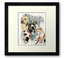 American Staffordshire Terrier /Ghost Framed Print
