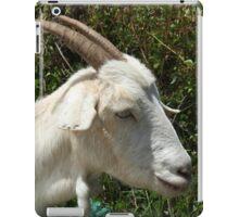 White Goat on a Farm iPad Case/Skin