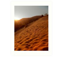 Movement In The Sands Art Print
