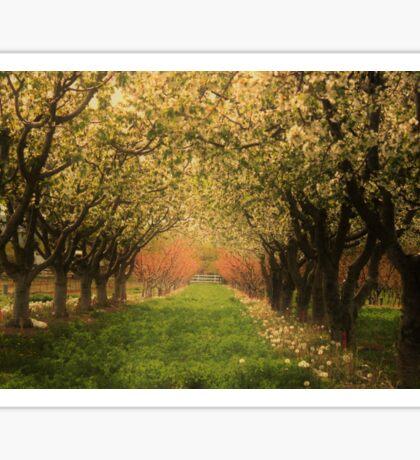Fruitful Blooms of Spring Sticker