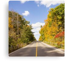 Autumn Road to Nowhere 2 Canvas Print