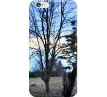Potter's Field iPhone Case/Skin