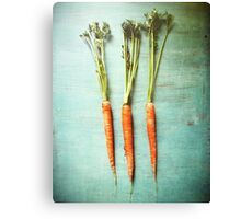 Three Carrots Canvas Print