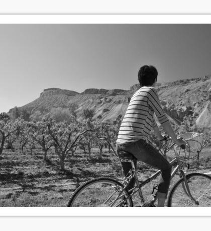 Biking Through the Orchards Sticker
