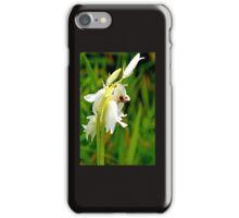 Spider on White Bells.......Portisham, Dorset UK iPhone Case/Skin