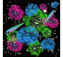 Fur balls in space Photographic Print