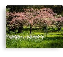 Blossom & Blooms Canvas Print