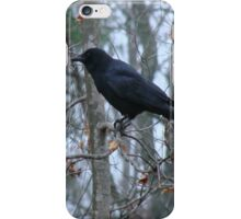 Winter Crow iPhone Case/Skin