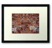 TH184 Framed Print