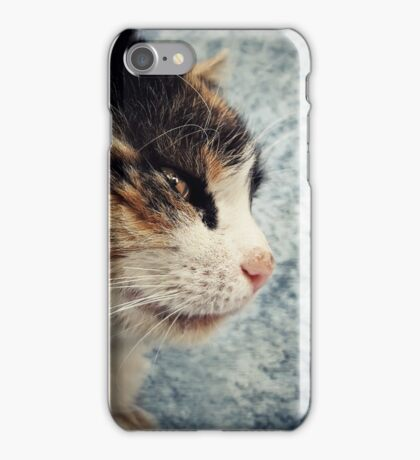 sneaky iPhone Case/Skin