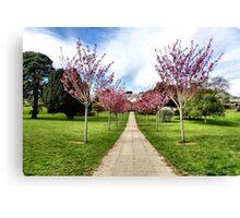 Pounds House Spring Blossom Canvas Print