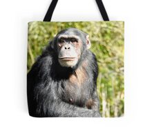 Teenage Chimpanzee Tote Bag
