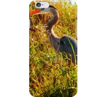 Whether Feather? iPhone Case/Skin