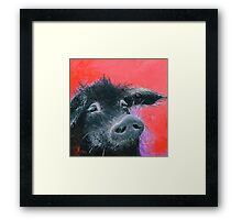 Happy Black Pig painting on red Framed Print