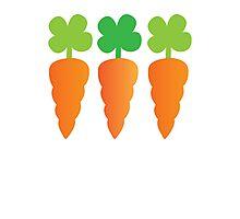 Three carrots orange vegetables Photographic Print