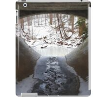 Peaceful Frozen Tunnel  iPad Case/Skin