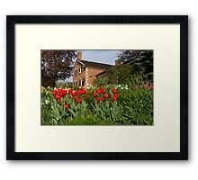 Tulip Garden - Marvelous Spring Flower Beds With Red Tulips and More Framed Print